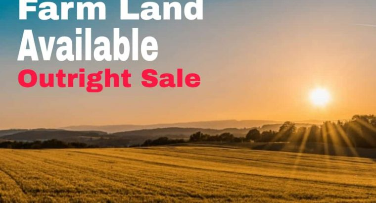 Farm land available in yellow belt